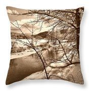 Mood Of Winter Throw Pillow
