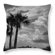 Moody Florida Sky Throw Pillow