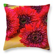 Moody Red Gerbera Dasies Throw Pillow