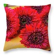 Moody Red Gerbera Dasies Throw Pillow