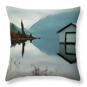 Moody Reflection Throw Pillow