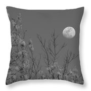 Moon And Trees B And W Throw Pillow