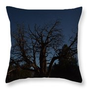 Moon Brings Life To An Old Tree Throw Pillow