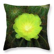 Moon Cactus Throw Pillow