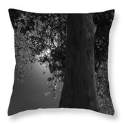 Moon Fall Throw Pillow