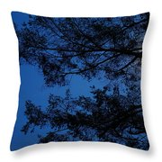 Moon Hiding In The Tree Throw Pillow
