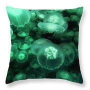 Moon Jelly Aurelia Aurita Group Throw Pillow