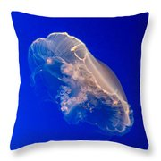 Moon Jelly Series #2 Throw Pillow