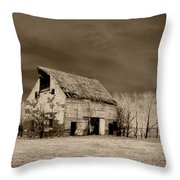 Moon Lit Sepia Throw Pillow