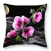 Moon Scape Throw Pillow