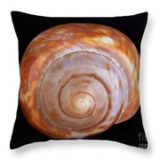 Moon Shell Throw Pillow