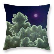 Moon Stories Throw Pillow