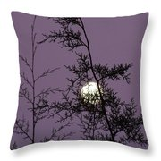 Moon Trees Throw Pillow