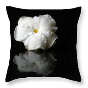 Moonbeam Flower Throw Pillow