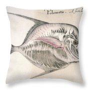 Moonfish, 1585 Throw Pillow