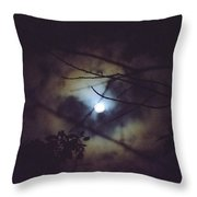 Moonlight And Branch 2 Throw Pillow