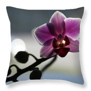 Moonlight And Orchid Throw Pillow