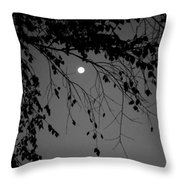 Moonlight - B And W Throw Pillow
