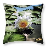 Moonlight Lily  Throw Pillow