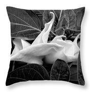 Moonlight/moonflower Throw Pillow