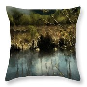Moonlight On Canadian Lake Throw Pillow