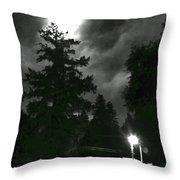 Moonlight On Philo Throw Pillow
