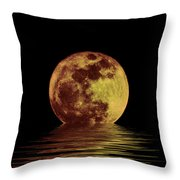 Moonlight On The Bay Throw Pillow