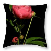 Moonlight Peony Watercolor Throw Pillow