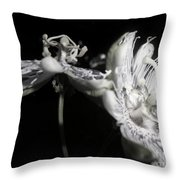 Moonlight Promenade - A Passion Fruit Production Throw Pillow