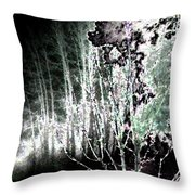 Moonlight Throw Pillow
