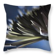 Moonlit Throw Pillow