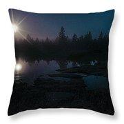 Moonlit Wetland Throw Pillow