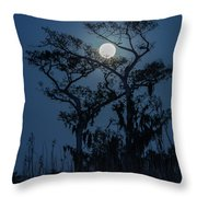 Moonrise Over Wetlands Throw Pillow