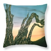 Moonset-bristlecone Pine Throw Pillow