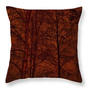 Moonshine 11 Red Sky Throw Pillow
