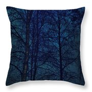 Moonshine 12 Blue Sky Throw Pillow