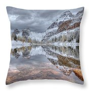 Moor Lake Throw Pillow