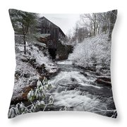 Moore State Park 4 Throw Pillow