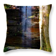 Moore Cove Falls Throw Pillow