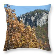 Moore's Knob Throw Pillow