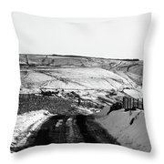 Moorland In The Snow Throw Pillow
