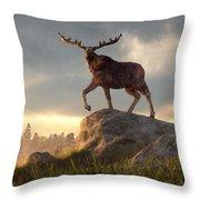 Moose At Dawn Throw Pillow