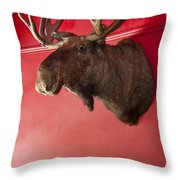 Moose Head Mounted On A Wall. Throw Pillow