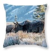 Moose In Cold Winter Ice Throw Pillow