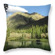 Moose In The Elk Creek Beaver Ponds Throw Pillow
