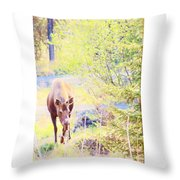 Moose In The Yard Throw Pillow