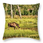 Moose Meadows Throw Pillow