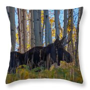 Moosey Throw Pillow