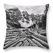 Moraine Lake Driftwood No 1 Throw Pillow