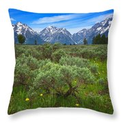 Moran Meadows Throw Pillow